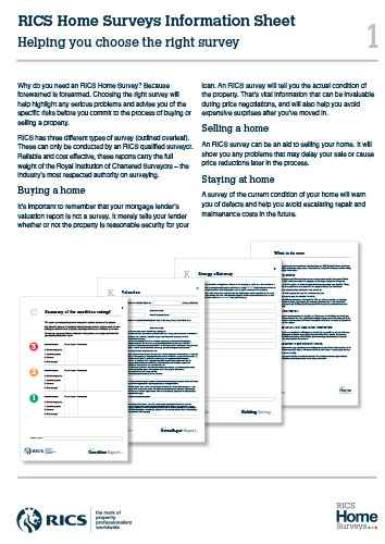 RICS Information Sheet