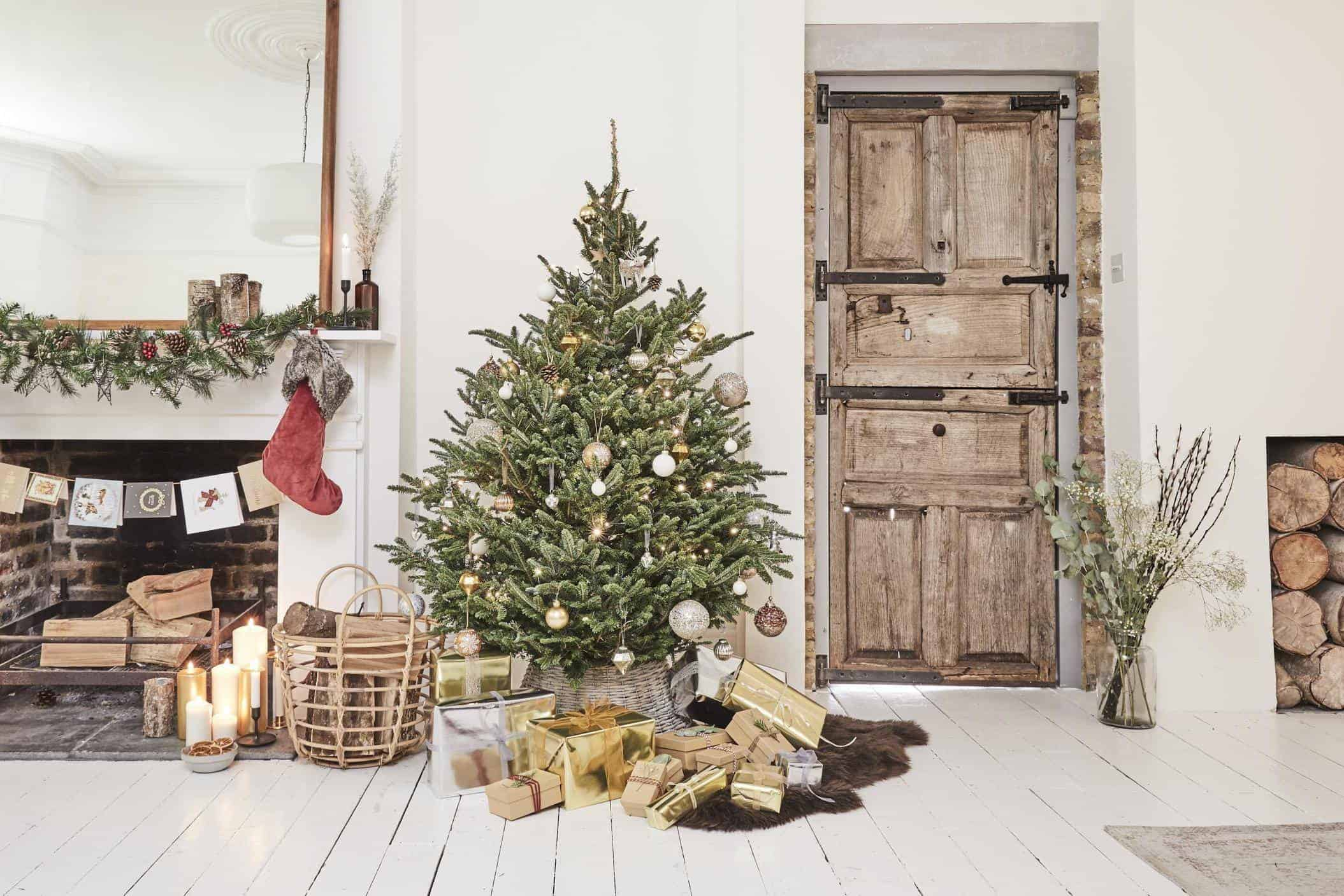 Christmas tree care guide: how to keep a real Christmas ...